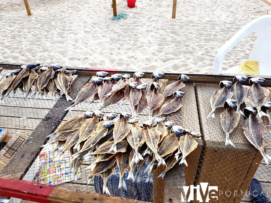 Pescado seco en un puesto de la praia de Nazaré qué ver en Nazaré