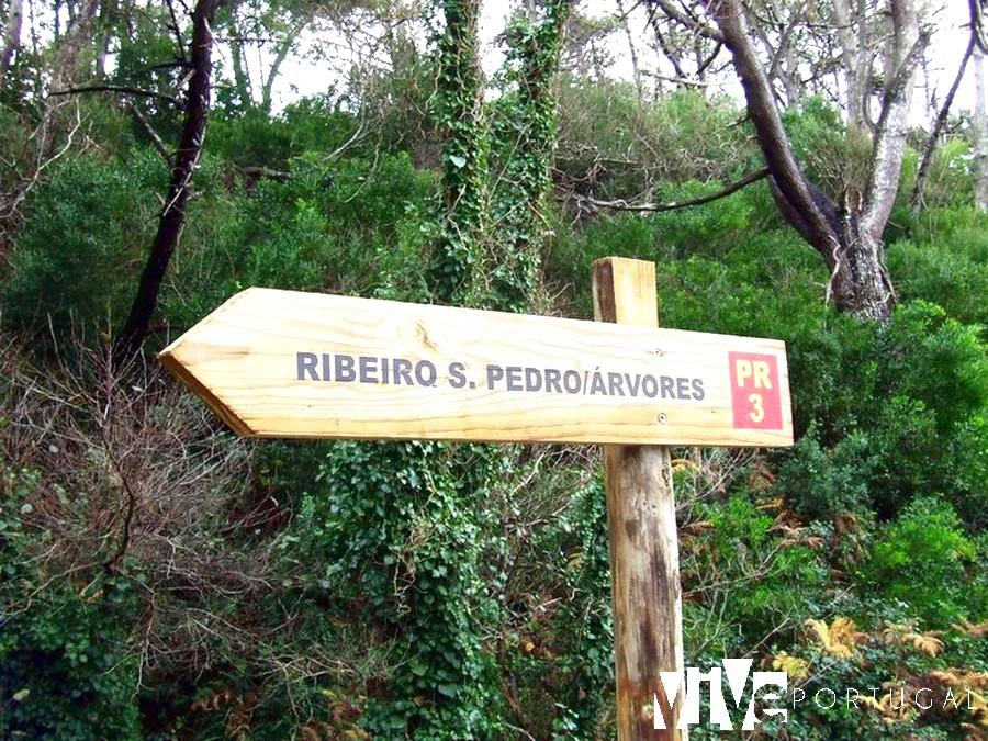 Señalización de la ruta de la orla costeira ao Ribeiro de São Pedro